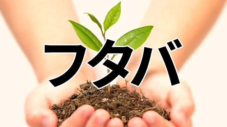 東京都の消費者金融キャッシングのフタバのアイキャッチ
