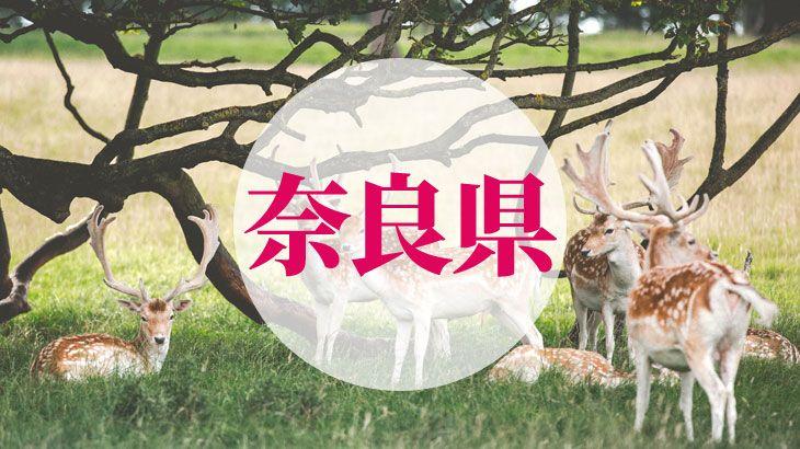 奈良県の消費者金融一覧