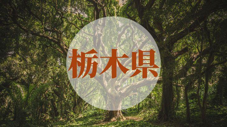 栃木県の消費者金融一覧