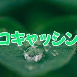東京都台東区の街金エコキャッシングは闇金じゃないです!